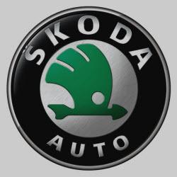 Четвертая победа Skoda в нынешнем сезоне ERC