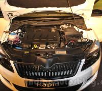 Двигатели шкоды рапид 2015